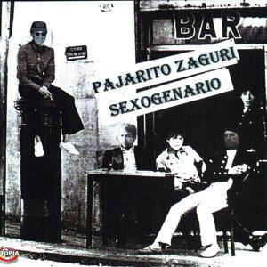 Pajarito Zaguri 歌手頭像