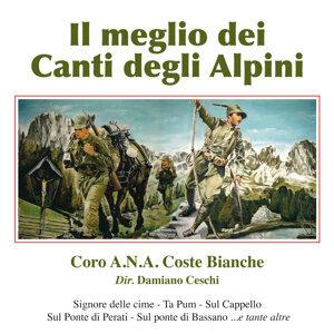 Coro A.N.A. Coste Bianche - Negrar 歌手頭像