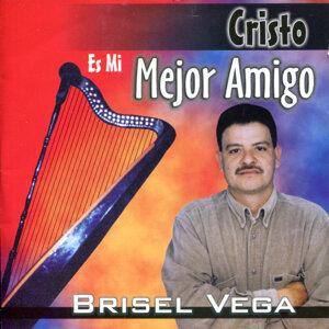 Brisel Vega 歌手頭像