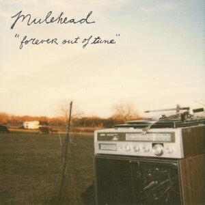 Mulehead