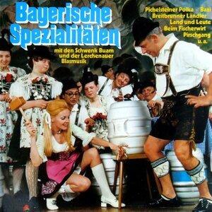 Die Schwenk Buam und Die Lerchenauer Blasmusik 歌手頭像