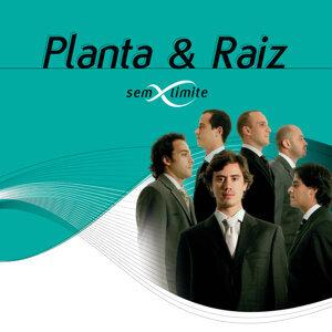 Planta & Raiz