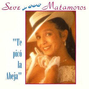 Seve Matamoros 歌手頭像