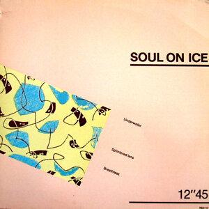 Soul On Ice 歌手頭像