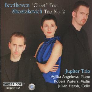 Jupiter Trio 歌手頭像