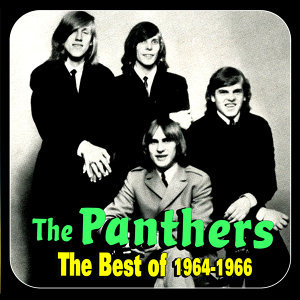 The Panthers 歌手頭像