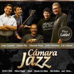 Camara Jazz 歌手頭像
