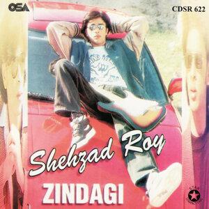 Shehzad Roy 歌手頭像