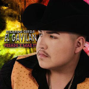 Ricardo Cerda 歌手頭像