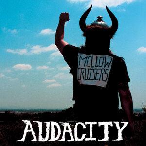 Audacity 歌手頭像