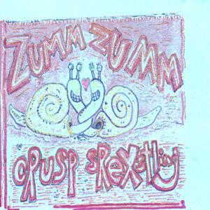 Zumm Zumm 歌手頭像