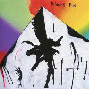 Black Pus 歌手頭像