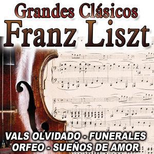Franz Listz 歌手頭像