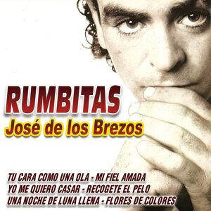 Jose De Los Brezos 歌手頭像