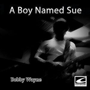 Bobby Wayne