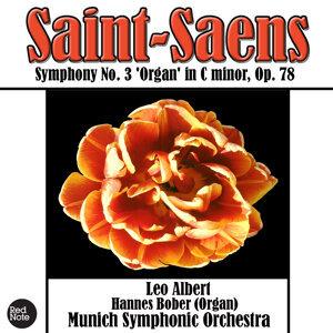 Munich Symphony Orchestra & Leo Albert 歌手頭像