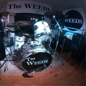The Weeds 歌手頭像