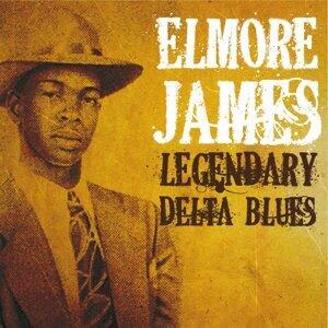 Elmore James 歌手頭像