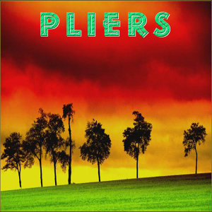Pliers 歌手頭像