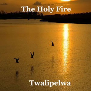 The Holy Fire 歌手頭像