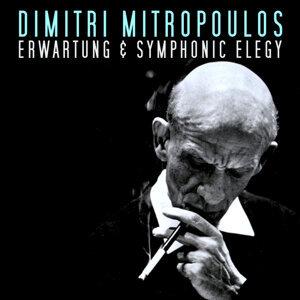 Dimitri Mitrpuls 歌手頭像