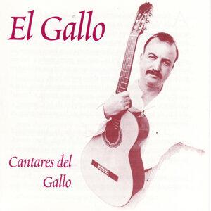 """Ernesto Perez """"El Gallo"""" 歌手頭像"""