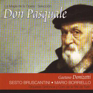 Sesto Bruscantini, Mario Borriello, Coro y Orquesta de la RAI de Turín 歌手頭像