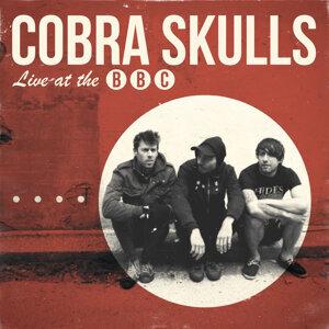 Cobra Skulls 歌手頭像