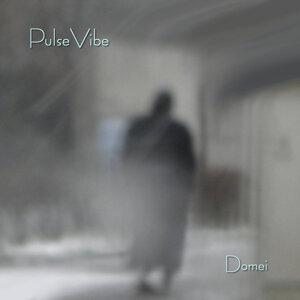 PulseVibe