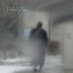PulseVibe 歌手頭像