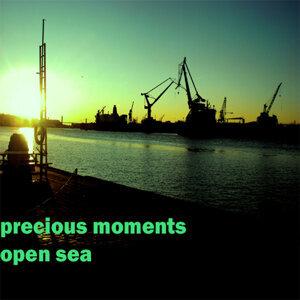 Precious Moments 歌手頭像