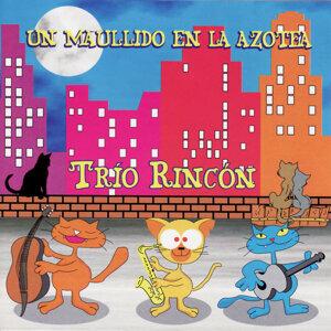 Trio Rincon 歌手頭像
