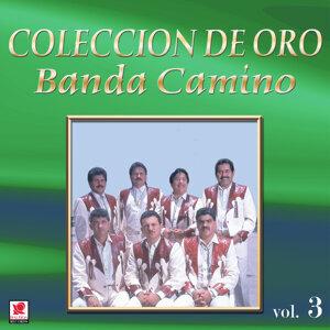 Banda Camino 歌手頭像