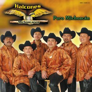 Halcones Michoacanos 歌手頭像