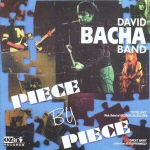 David Bacha Band 歌手頭像