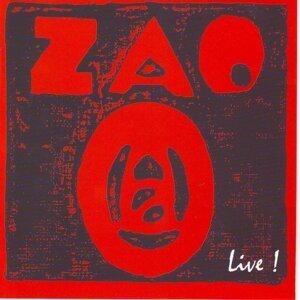 ZAO 歌手頭像