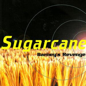 Sugarcane 歌手頭像