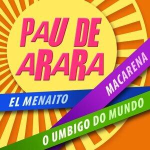 Pau De Arara 歌手頭像