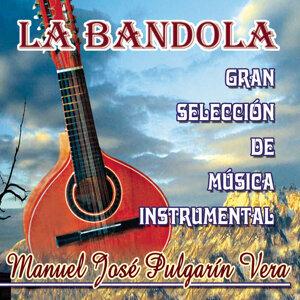 Manuel José Pulgarín Vera 歌手頭像