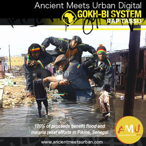 Gokh-Bi System