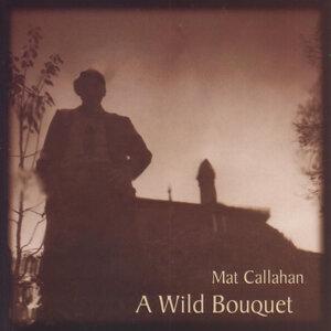 Mat Callahan 歌手頭像