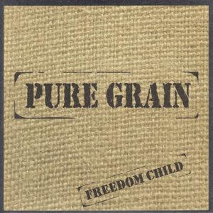 Pure Grain 歌手頭像