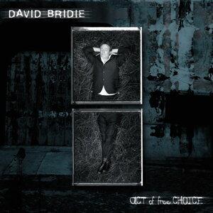 David Bridie 歌手頭像