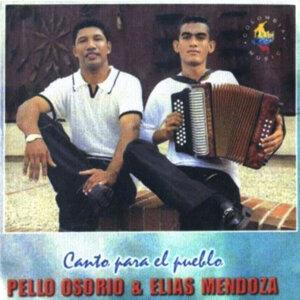 Pello Osorio 歌手頭像
