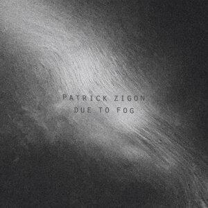 Patrick Zigon 歌手頭像