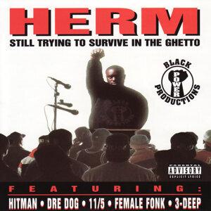 Herm 歌手頭像