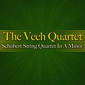 The Vech Quartet 歌手頭像