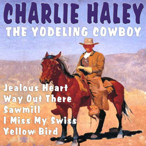 Charlie Haley and Charlie McCoy 歌手頭像