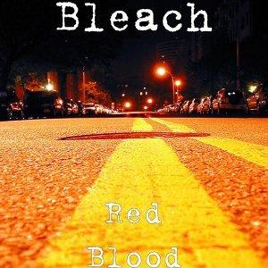 Bleach 歌手頭像
