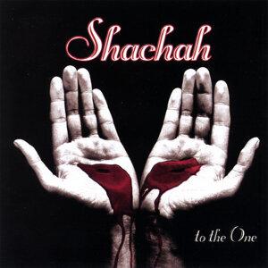 Shachah
